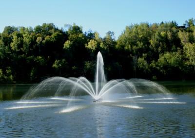 Fonte flutuante